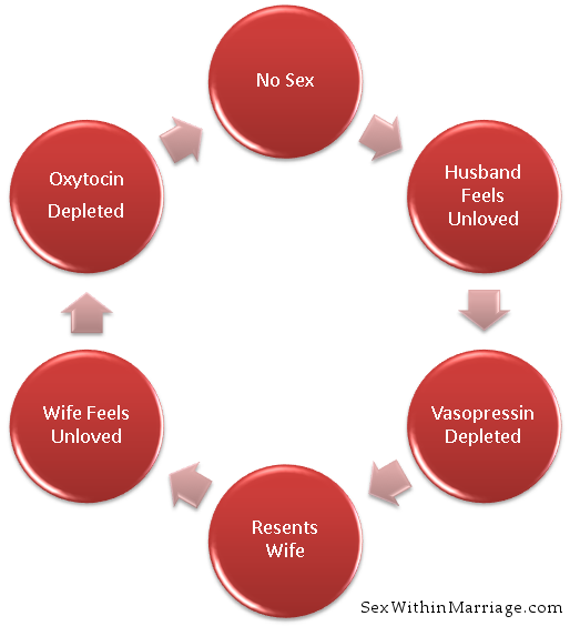 "a study on the effects of sex within marriages Effects of marriage on society within a family built on such also called the ""sex in america"" survey, this study used data from the national health and."