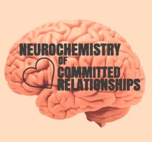 Neurochemistry of Committed Relationships