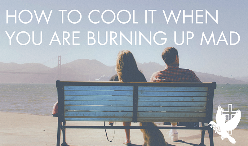 how-to-cool-it-when-you-are-burning-up-mad by byron loy, Agape Christian Counseling Services St Louis MO